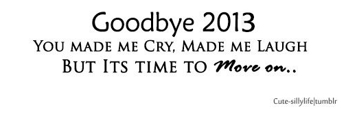 goodbye 2013-