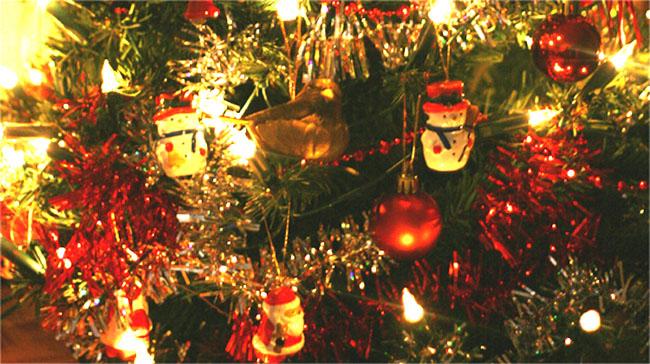 kerstboom 0