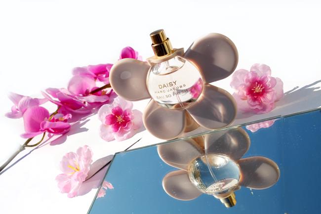 parfum stash 13